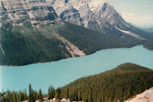 Th_peyto_lake