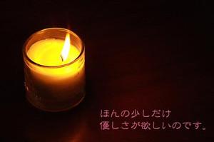 Th_photo1_40_2