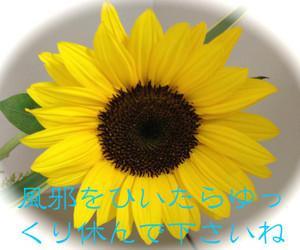 Th_img_0210_200110