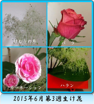Th_201563