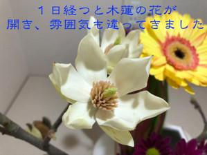 Th_img_0610